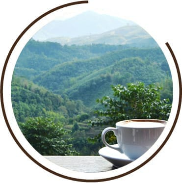 Cup of coffee on a table overlooking a landscape